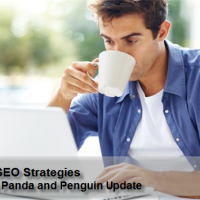 Future SEO Strategies After the Panda and Penguin Update