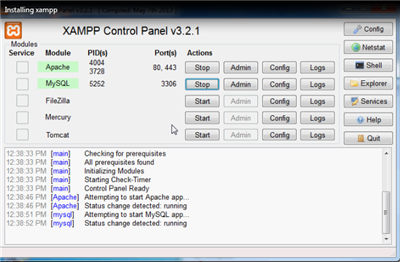 Start XAMPP Services